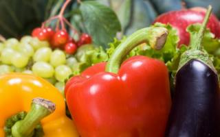 Charla sobre nutricion