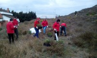 Voluntari@s de Cruz Roja Somontano plantan 150 árboles en Barbastro