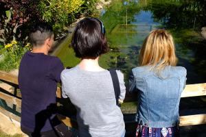 Cruz Roja atiende a 51 personas solicitantes de asilo y refugio en Huesca