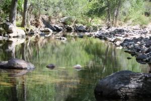 Medio Ambiente: Moviéndonos por el río