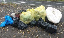 Cruz Roja en Ribagorza pone en marcha su plan de medio ambiente